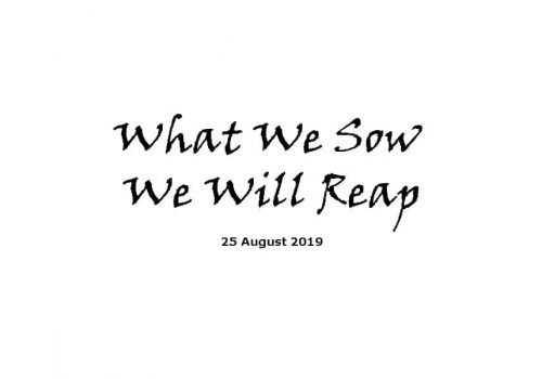 Sermon - 25-8-19 - What We Sow We Will Reap